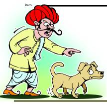 A day in the life of an Indian dog…
